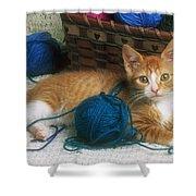 Golden Tabby Kitten Shower Curtain