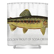 Golden Trout Of Soda Creek Shower Curtain by Aged Pixel