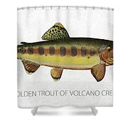 Golden Trout Of Volcano Creek Shower Curtain