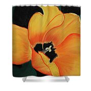 Golden Tulip Shower Curtain