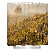 Golden Vineyard And Tree Shower Curtain