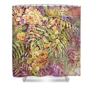 Golden Wattle Shower Curtain