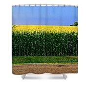 Golden Waves Of Grain Shower Curtain