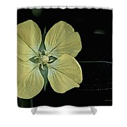 Golden Wild Beauty Shower Curtain