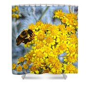 Golden Yarrow And Visitor Shower Curtain