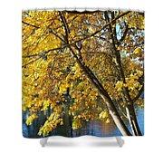 Golden Zen Shower Curtain
