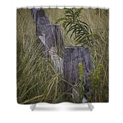 Goldenrod By The Fence Shower Curtain