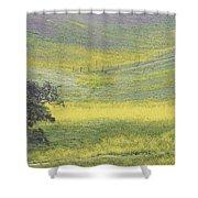 Goldenrod Oak Santa Ynez California 3 Shower Curtain