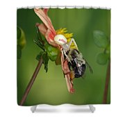 Goldenrod Spider Shower Curtain