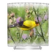 Goldfinch #3 By Kerri Farley Shower Curtain