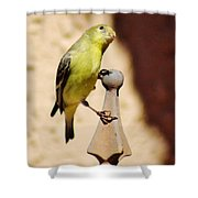 Goldfinch Contemplating 031015ac Shower Curtain