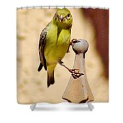 Goldfinch Hanging On 031015ac Shower Curtain