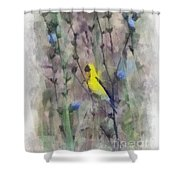 Goldfinch In Wildflowers Shower Curtain