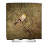 Goldfinch Portrait Shower Curtain