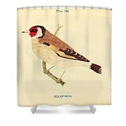 Goldfinch Shower Curtain by Philip Ralley
