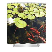 Goldfish And Water Lily 1 Shower Curtain