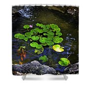 Goldfish With Lily Pads Shower Curtain