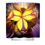 Goldie's Iris Shower Curtain