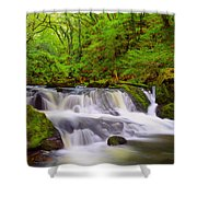 Golitha Falls And River Fowey Shower Curtain