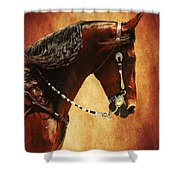 Gone Country Shower Curtain