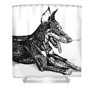 Good Dog Shower Curtain by Michael Volpicelli