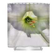 Good Dreams Shower Curtain