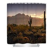Good Morning Arizona Shower Curtain