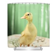 Good Morning Sunshine Shower Curtain by Amy Tyler