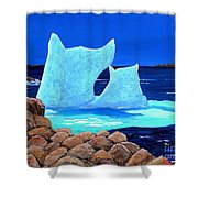 Goodbye Greenland Shower Curtain