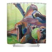 Goofball Shower Curtain by Kimberly Santini