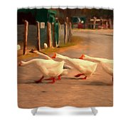Goose Crossing Shower Curtain by Michael Pickett