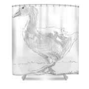 Goose Drawing Shower Curtain