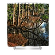 Goose Lake Twilight Shower Curtain