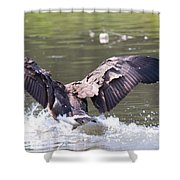 Goose Landing Iv Shower Curtain