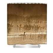 Goose Of The Mist Shower Curtain