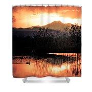 Goose On Golden Ponds 1 Shower Curtain