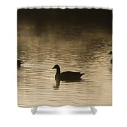 Goose Silhouette Shower Curtain