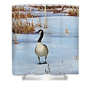Goose Standing Shower Curtain