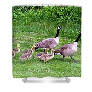 Goose Step Shower Curtain by Will Borden