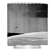 Goose With A Mission Shower Curtain