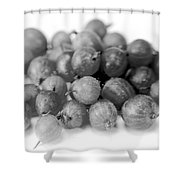 Gooseberries Shower Curtain