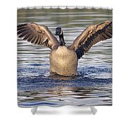 Gooseflapping 3 Shower Curtain