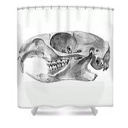 Gopher Skull Shower Curtain