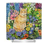 Gordon S Cat Shower Curtain by Hilary Jones