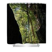 gorge in the Tsingy de Bemaraha Madagascar Shower Curtain