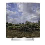 Gorgeous Cloud Cover Shower Curtain
