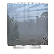 Gorgeous Morning Shower Curtain