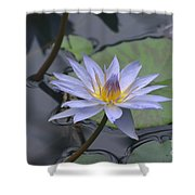 Gorgeous Pale Lavender Water Lily Shower Curtain