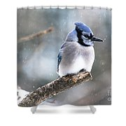 Gorgeous Pose Shower Curtain