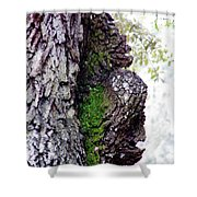 Gorilla Face In The Tree Shower Curtain